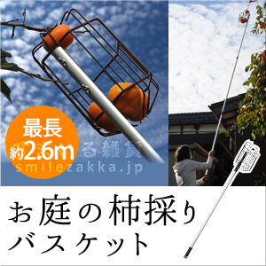 76872 お庭の柿採りバスケット